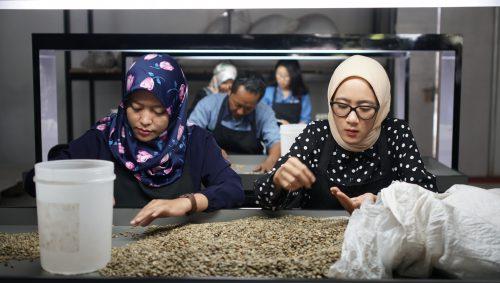 Gudang Kopi House Blend Terbesar Di Indonesia